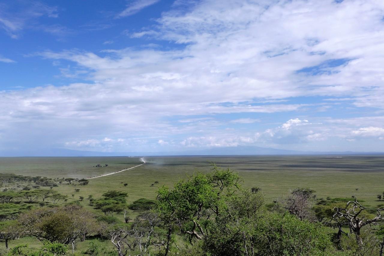 Blick vom Serengeti Park Gate Hügel