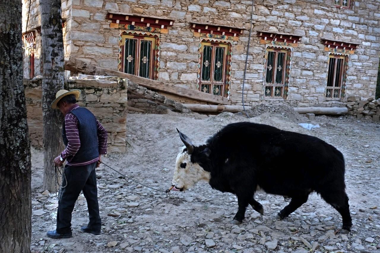 Im Dorf Zhonglu