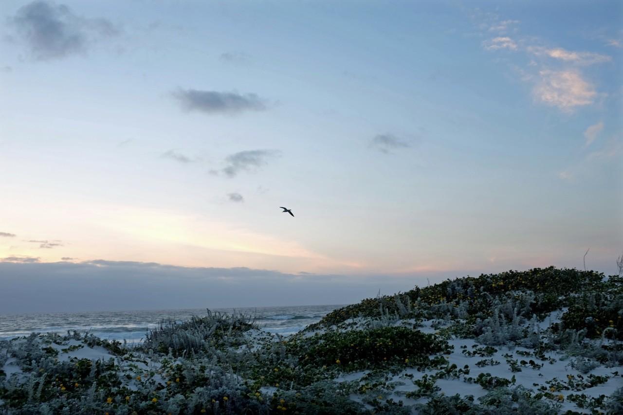 Strand von Pacific Grove, Monterey Peninsula