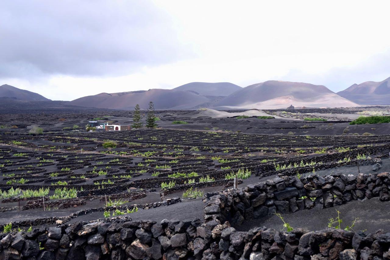 Casa Diama in den Lava-Weinfeldern von La Geria