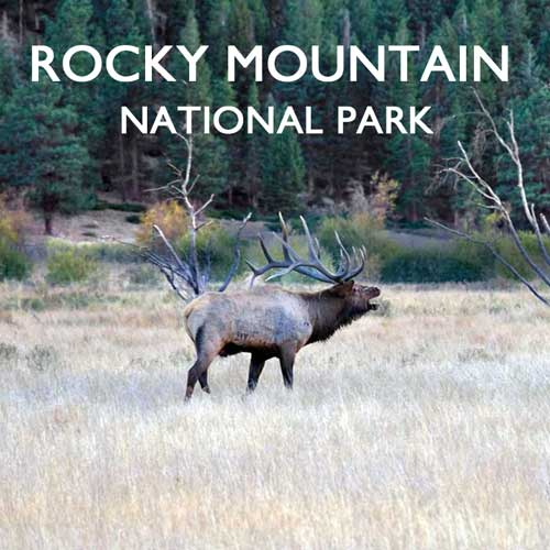 Rocky Mountain Nationalpark USA Reiseblog