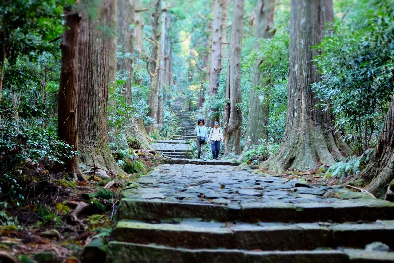 Der märchenhafte Daimon-zaka Weg