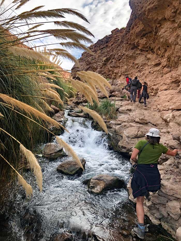 Canyon Wanderung zu den Puritama Hot Springs, Atacama