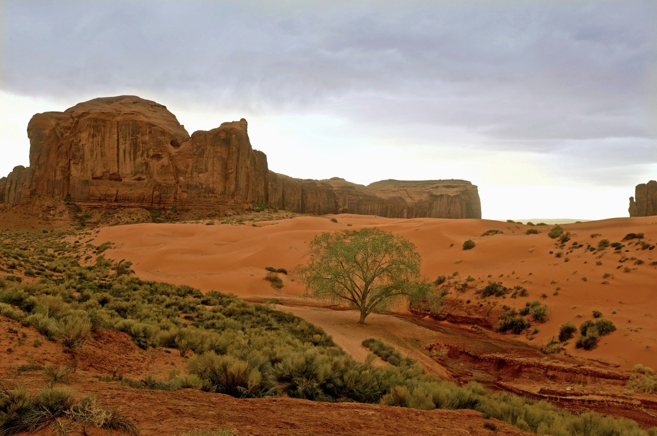 Rote Dünen am Monument Valley