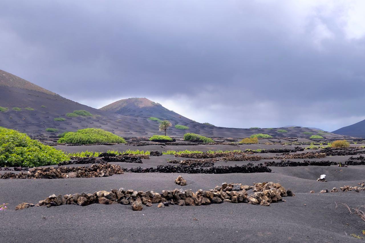 Landschaft von La Geria Lanzarote