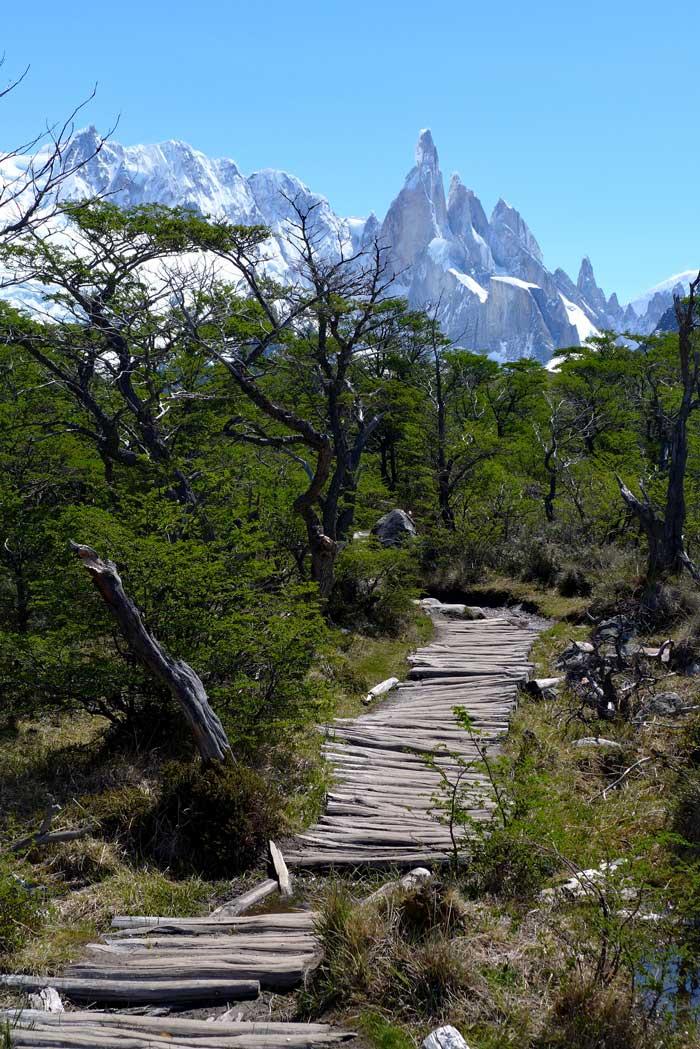 Wanderung zur Laguna Torre El Chalten
