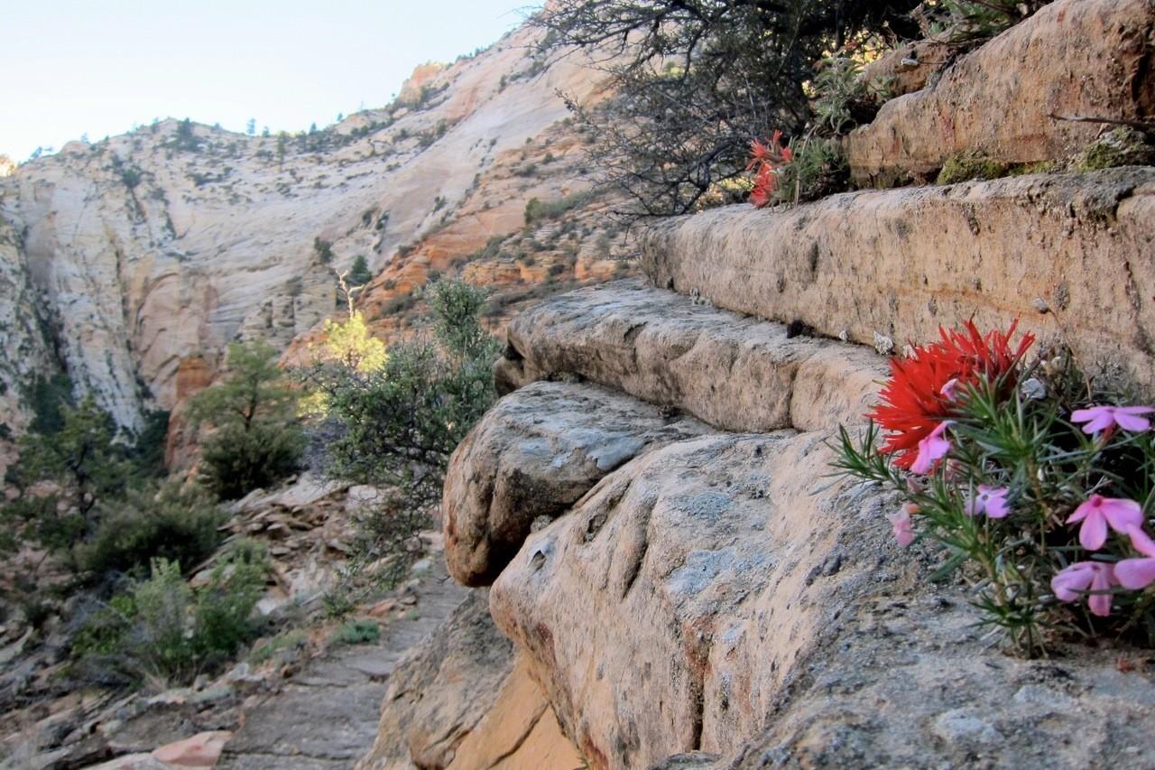 Aufstieg zum Observation Point, Zion NP