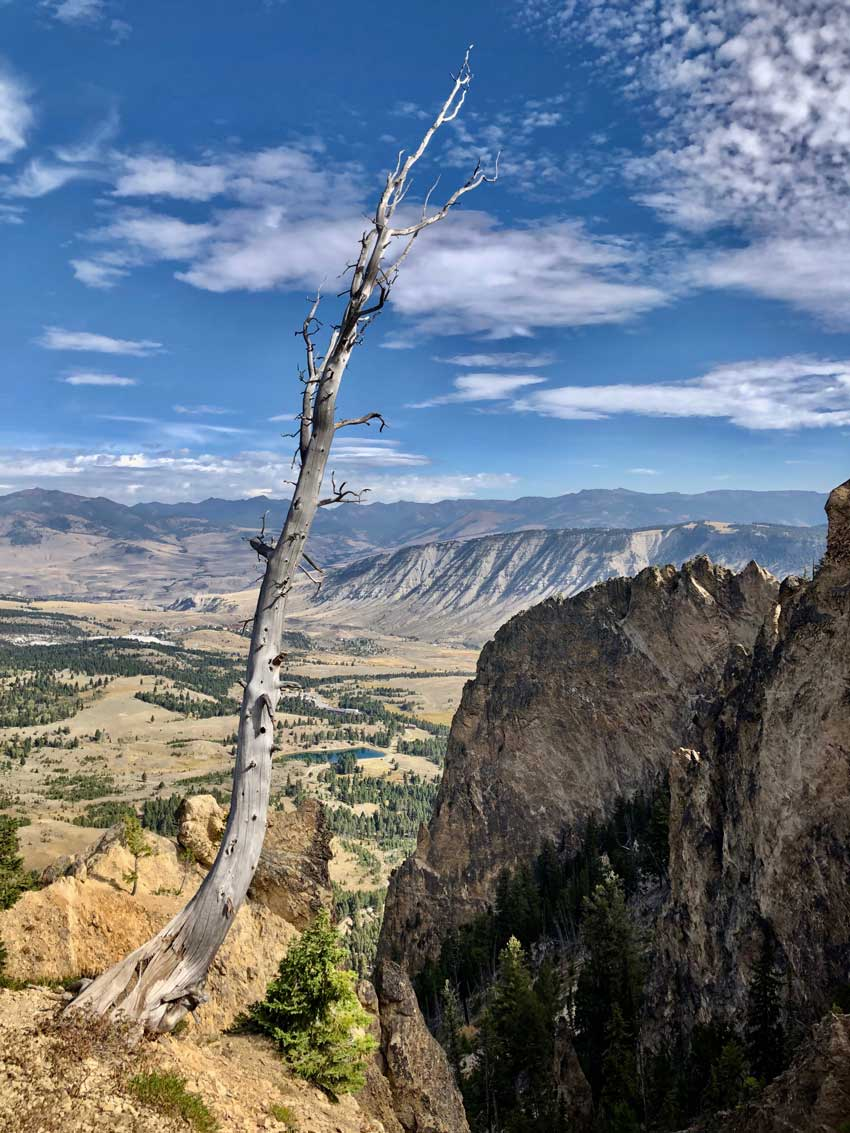Yellowstone Aussichtsberg Bunsen Peak