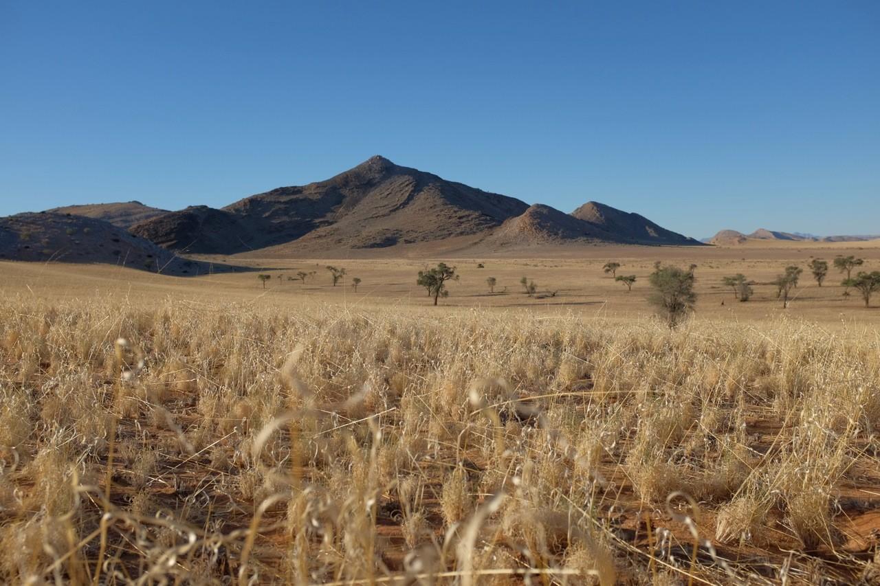 Tsondab Valley Hausberg, Namibia
