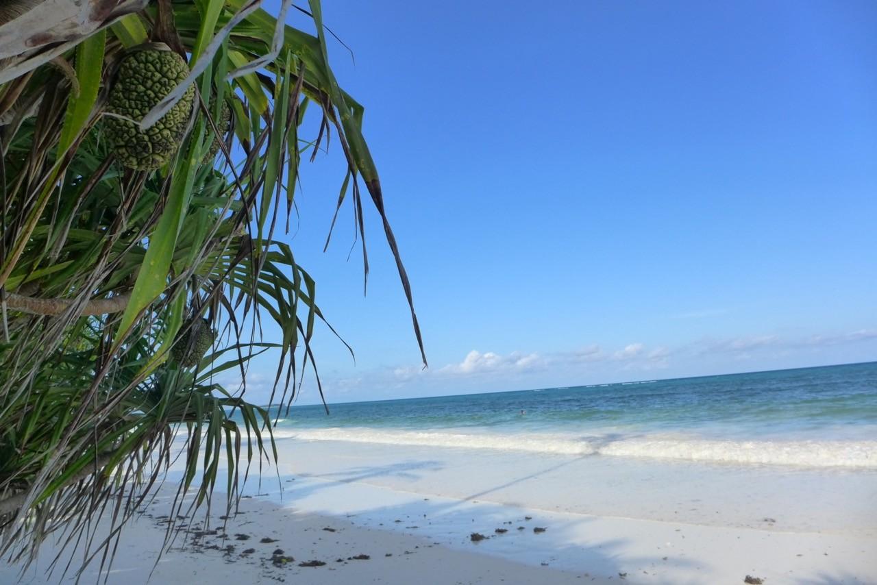 Das Meer zieht sich zurück und legt den weißen Sandtrand frei