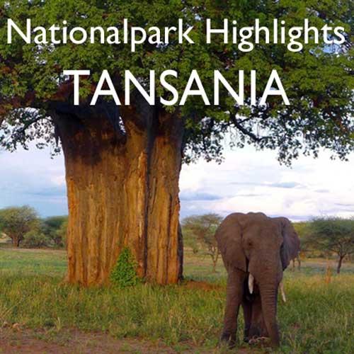 Reisebericht Tansania Safari Norden Reiseblog