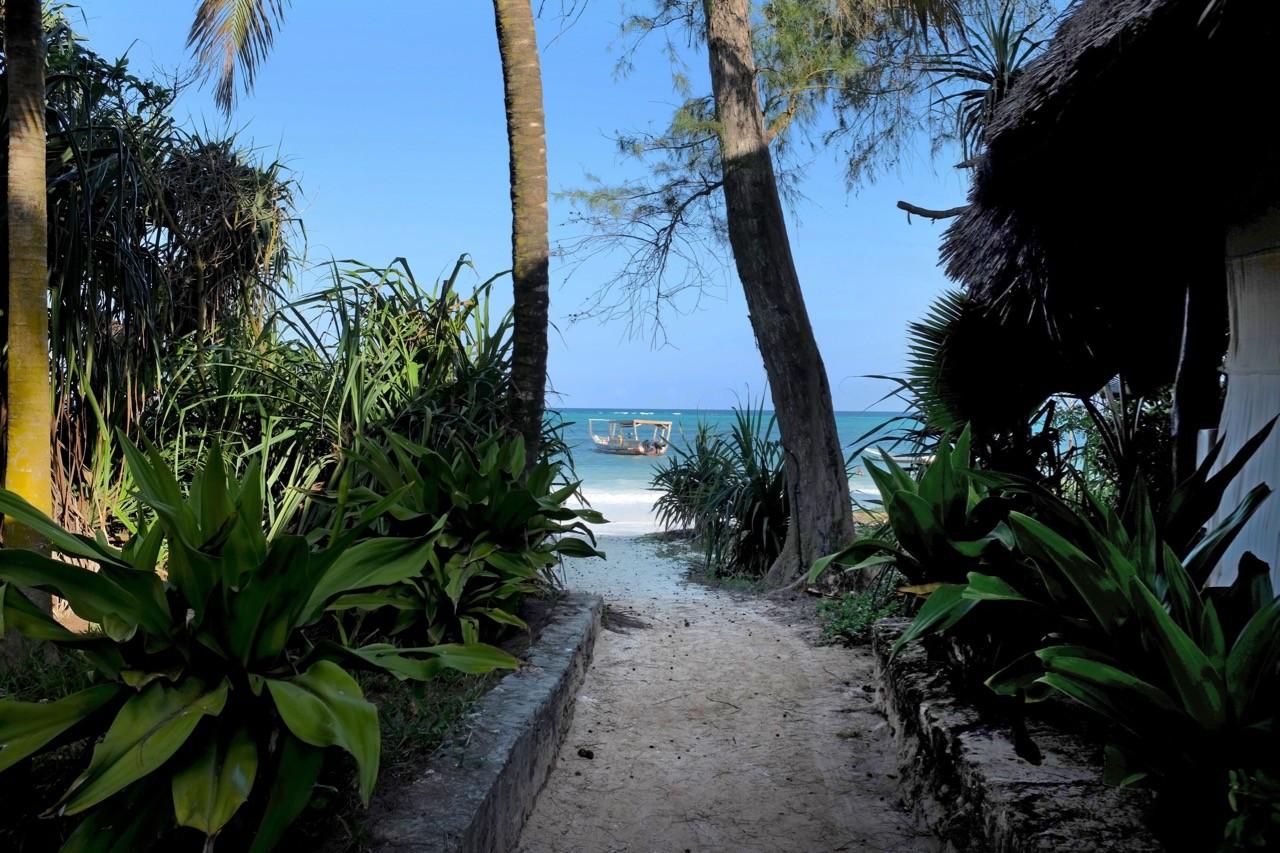 Alle Wege führen zur Matemwe Beach