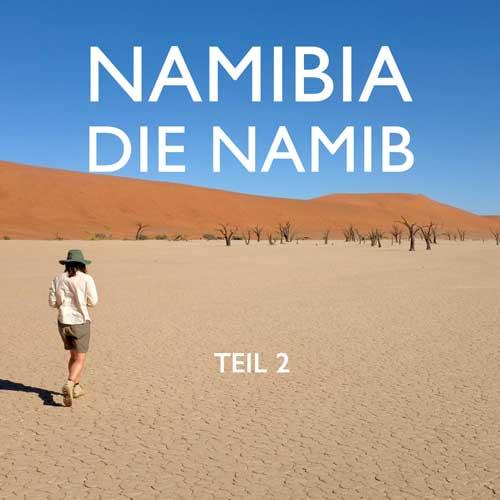 Reisebericht Namibia Namib Reiseblog