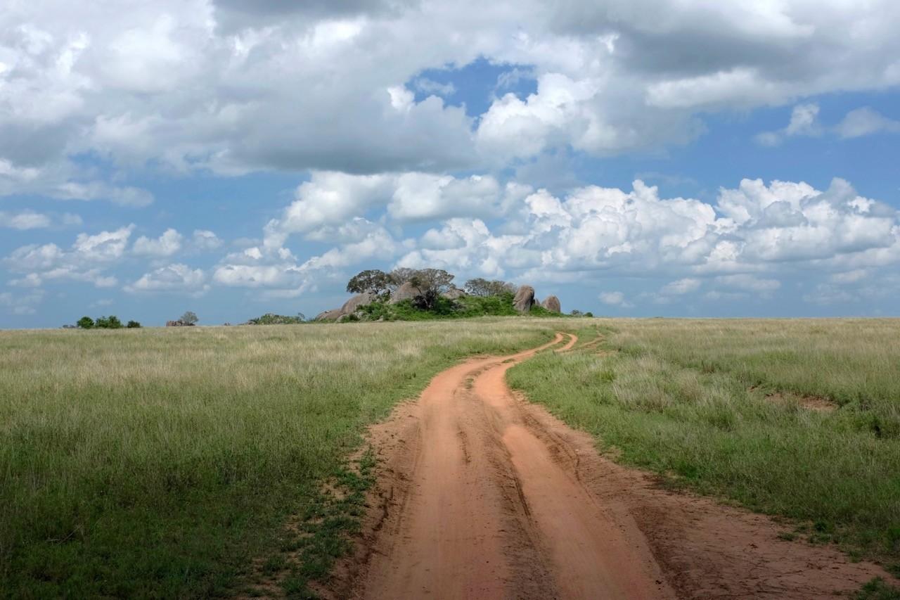Kopjes im flachen Serengeti Nationalpark