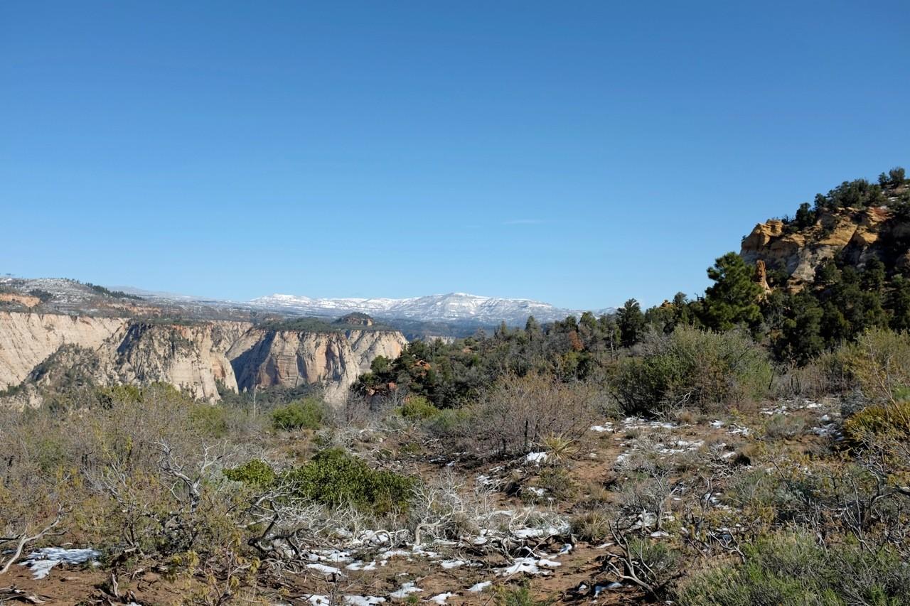 Auf dem Plateau kurz vor Observation Point Trail, Zion NP