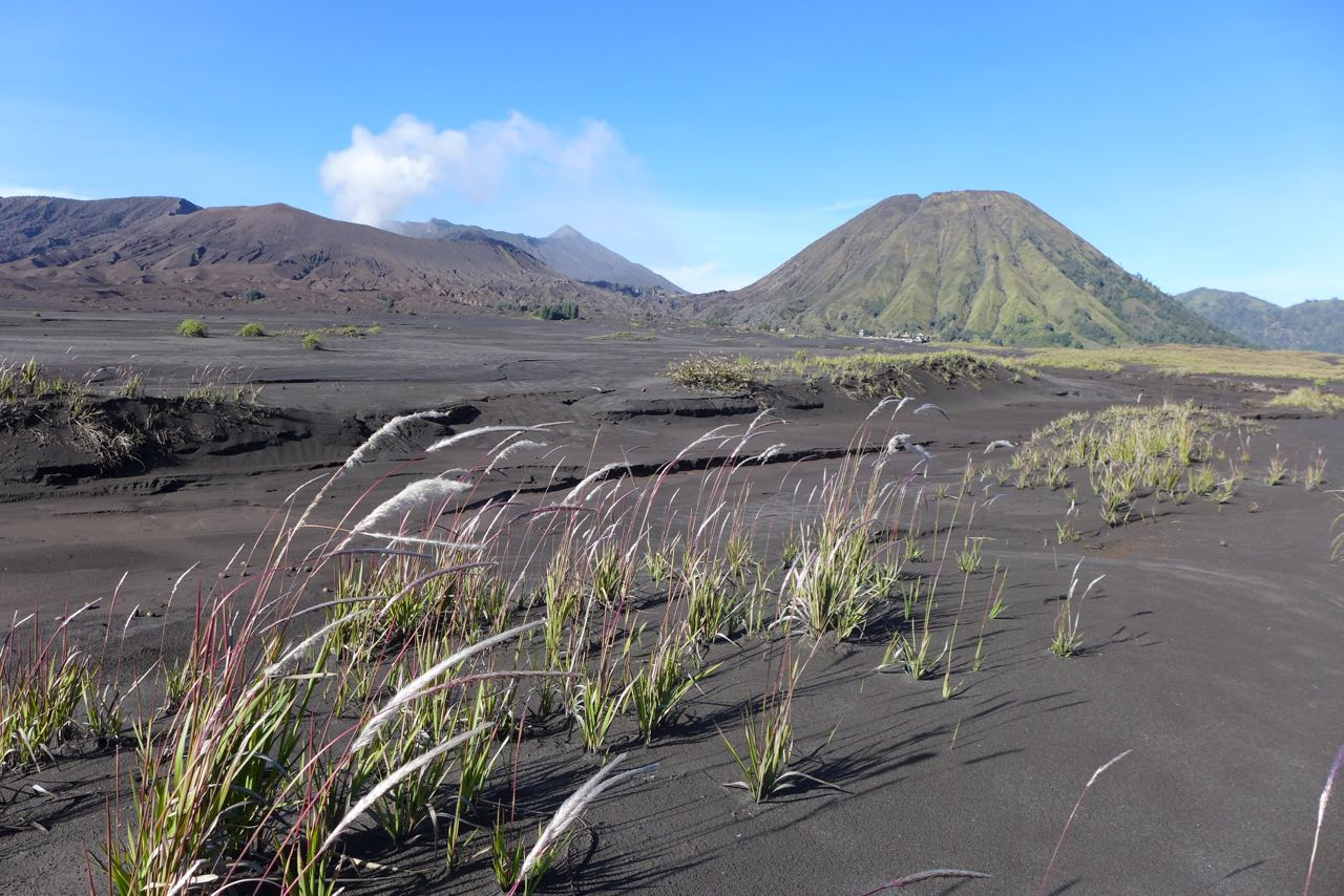 Alleine in der Sea of Sands in der  Bromo Caldera