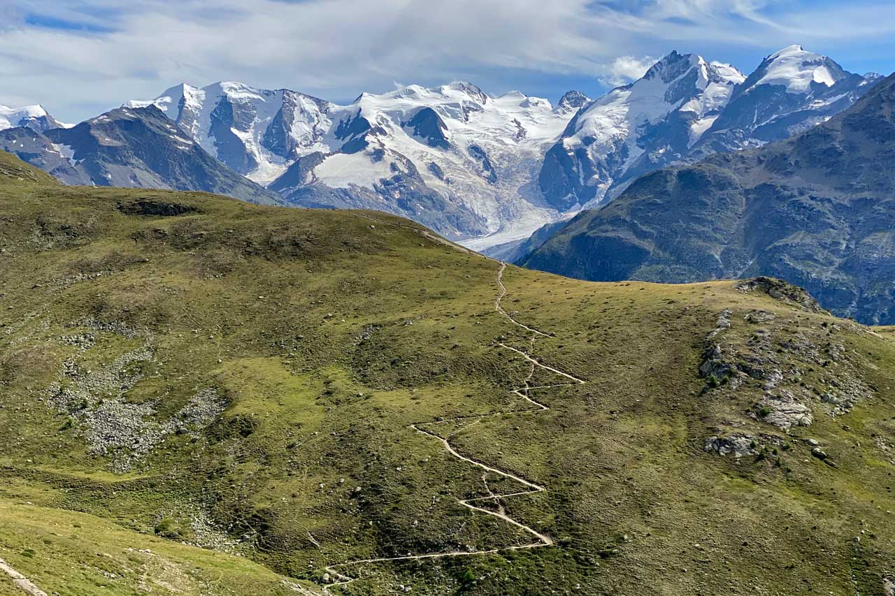 Die Bernina über grüner Alm