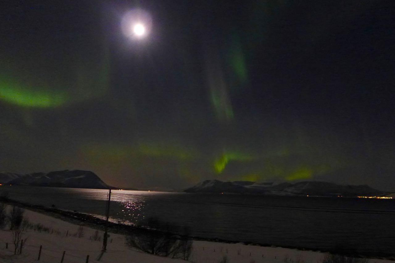 Nordlichter in den Lyngen Alpen Norwegen