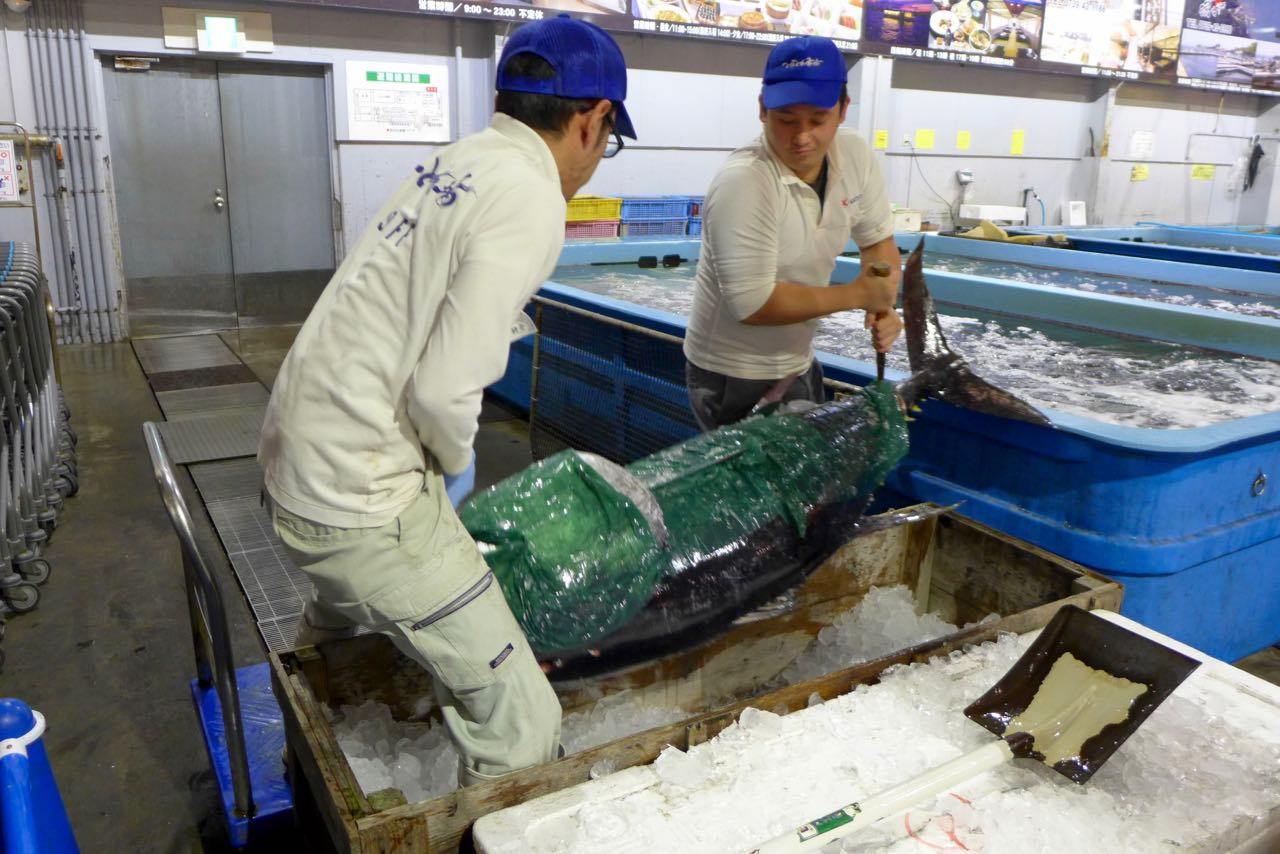 Toretore Seafood Market Shirahama