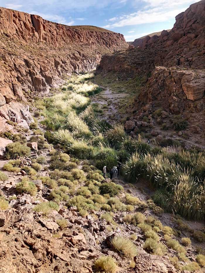 Canyon Wanderung in die Quebrada Escalera, Atacama