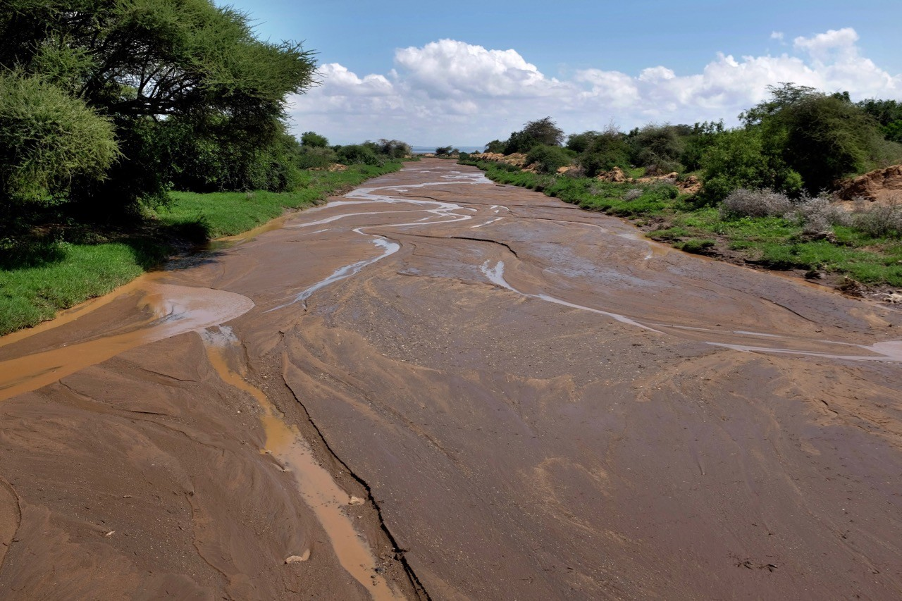 Einmal übers Flussbett im Lake Manyara Nationalpark