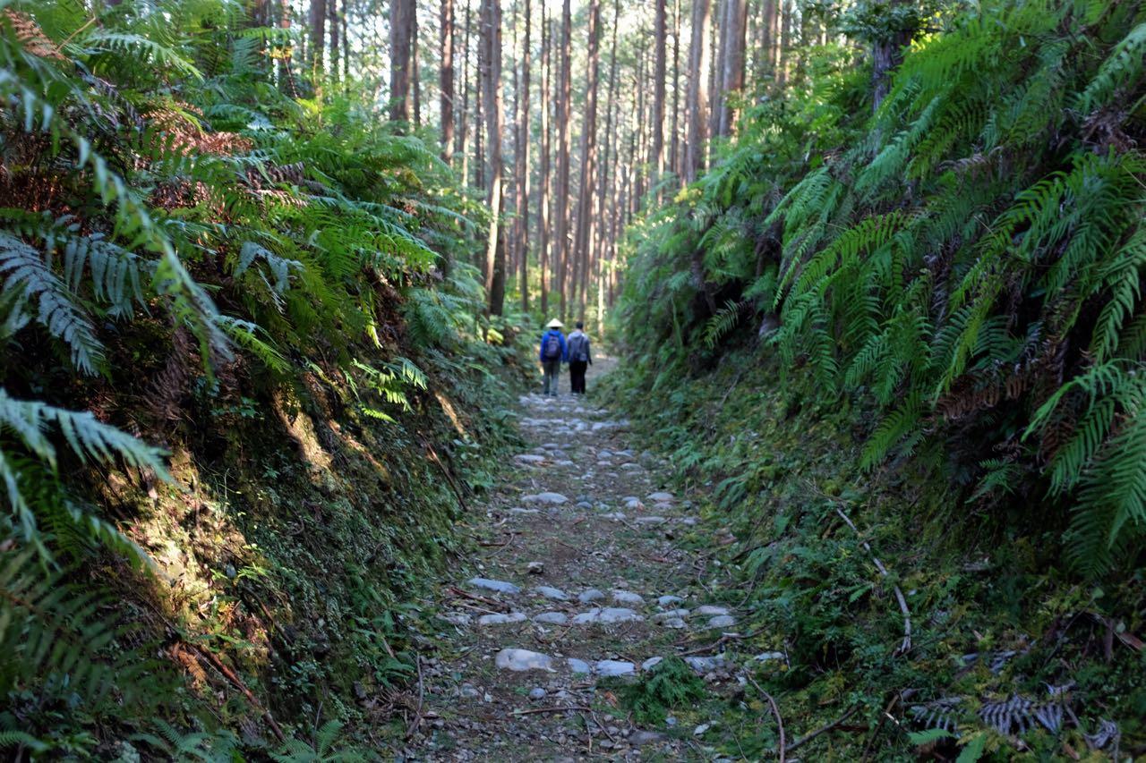 Abstieg nach zum Kumano Hongu Taisha Schrein