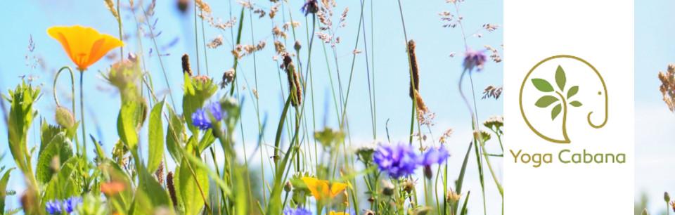 zaal voor yoga en meditatie