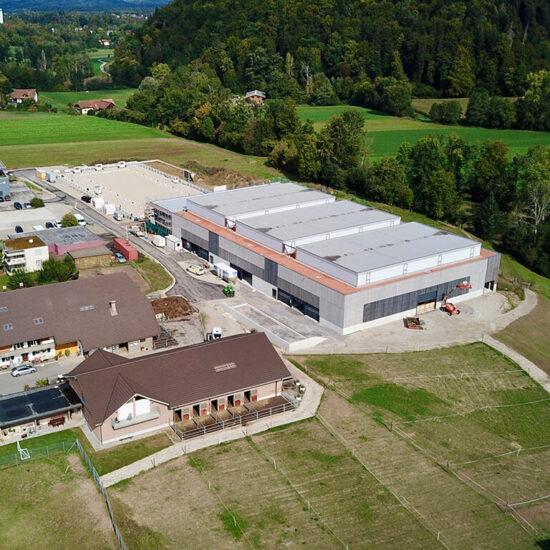 Gready startete an der Schweizermeisterschaft Dressur 2021