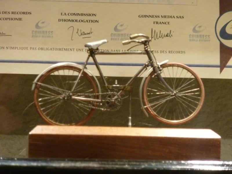 le plus petit vélo en état de marche = 10 cm environ