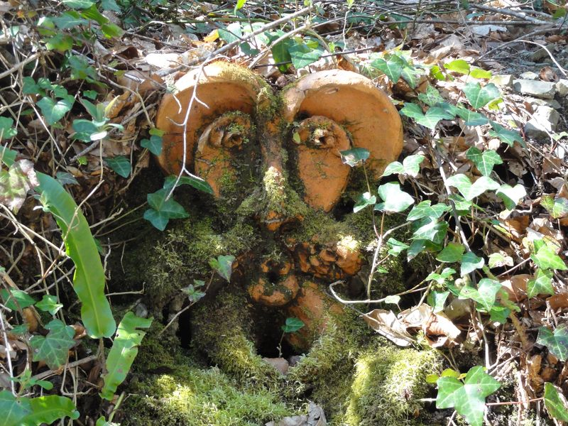 La Roche Jagu - masque dans un jardin