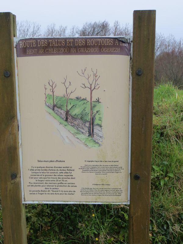 Route des talus et des routoirs à lin