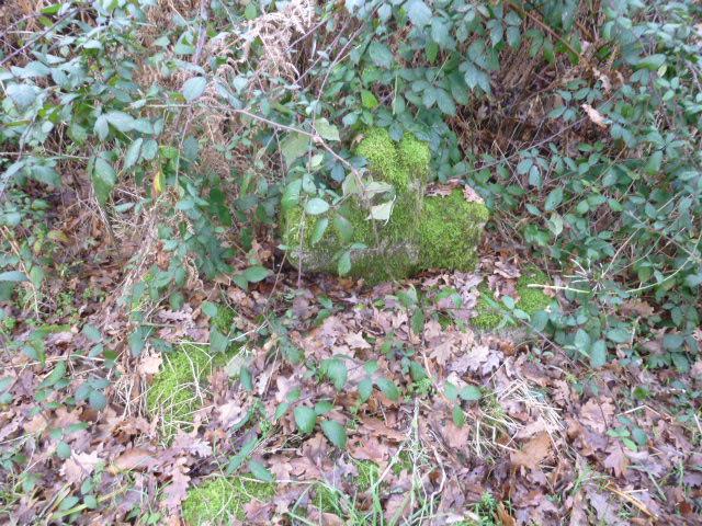 croix cassée dans les bois