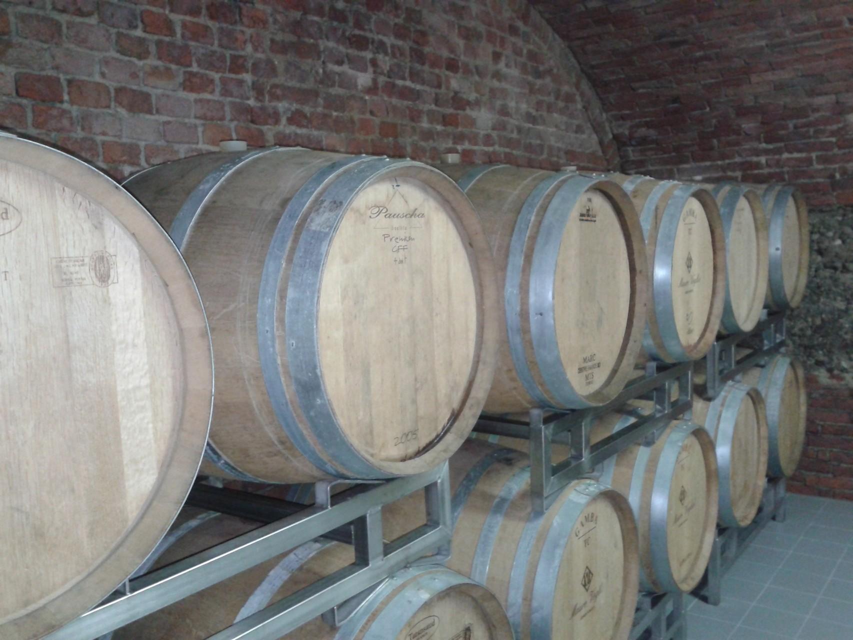 La BARRICAIA dove vengono affinati i grandi vini rossi