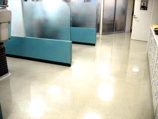 床クリーニング・床ワックス・トイレ清掃・キッチン清掃・クロス張替