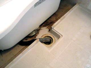 洗濯機排水管まわり清掃前