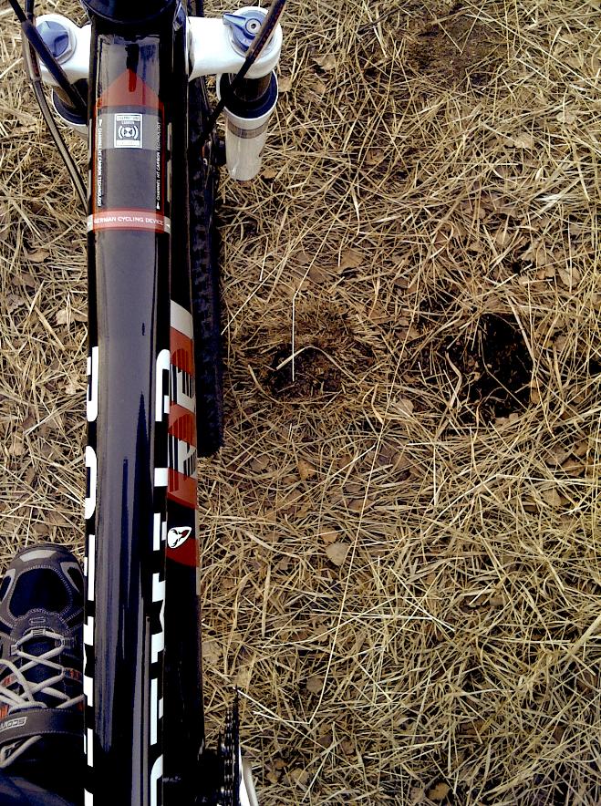 Rotwild R. R2 HT Carbon Mountain Bike. Kleine Edel-Bike-Schmiede aus Dieburg die mit ihren Fahrern schon einige Siege eingefahren hat. Schön kann also auch gut sein.