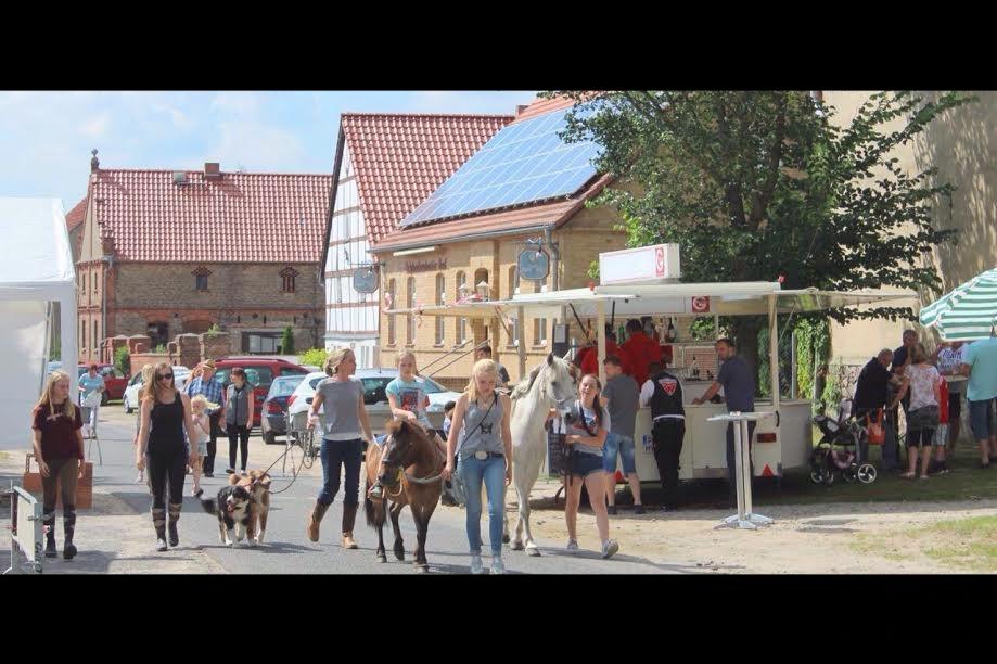 Mit den Ponys beim Dorffest in Schlunkendorf, 08.07.2017