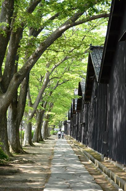 酒田/2012年新緑の日本一周・金環日食クルーズ 山居倉庫