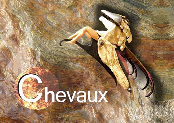 Vers la page Chevaux