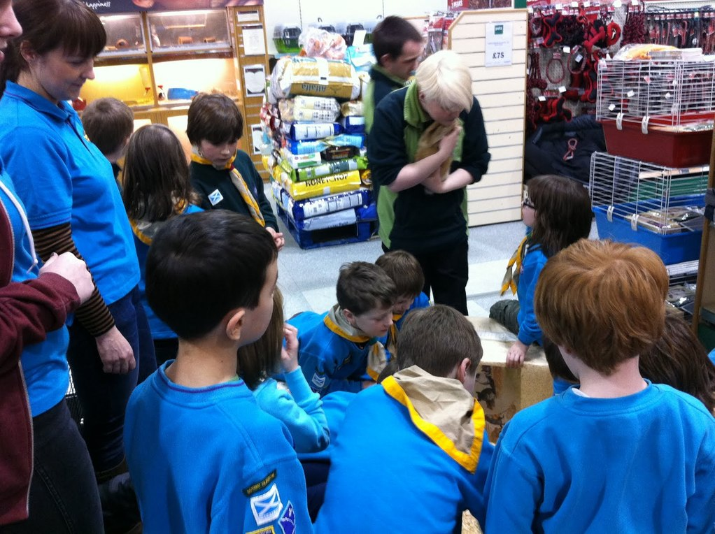 Pets at Home (Drumchapel) Visit