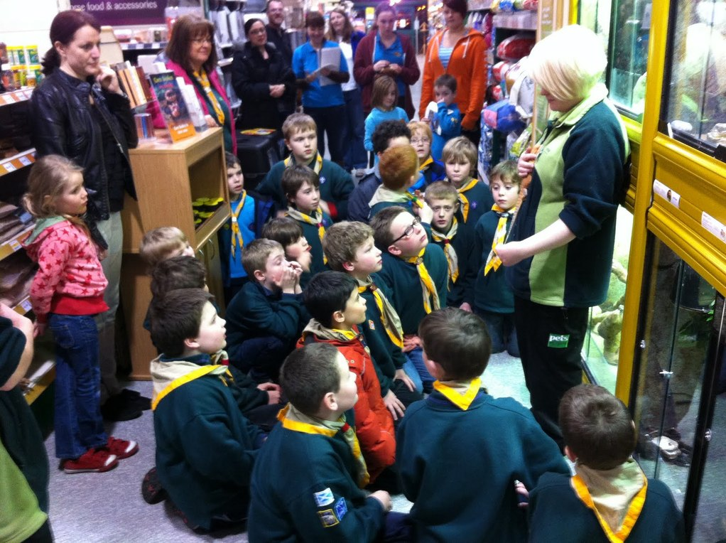 pets at home staff explain all about the Bearded Dragons