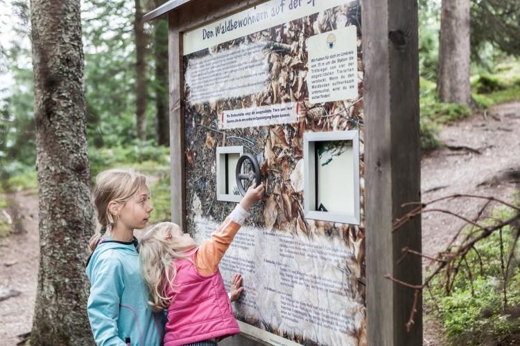erlebniswanderweg-salzburg-maria-alm-klein