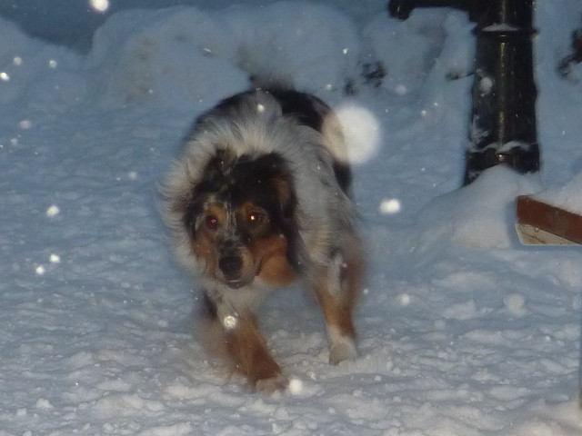 Winter Play!! 2013