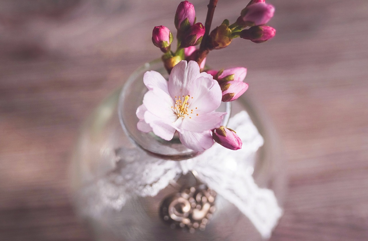春はなぜ心や体が不調になるの?
