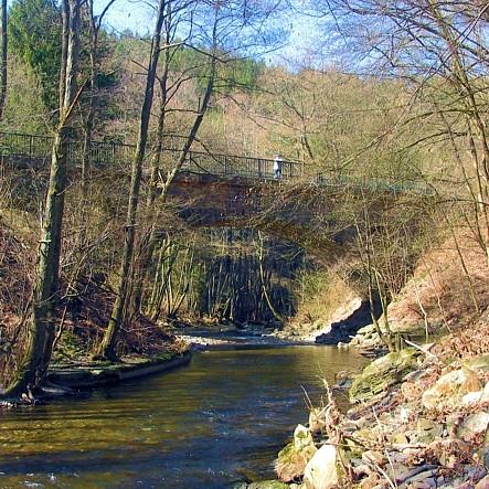 Die Ruwer zwischen Rauls-Mühle und Sommerau.