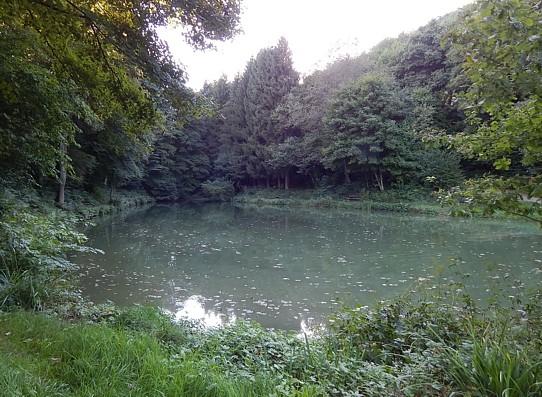Pluwig. Im Steinbruchgelände wurde der Wilzenburger Waschbachs zu einem idyllischen Angelteich aufgestaut.