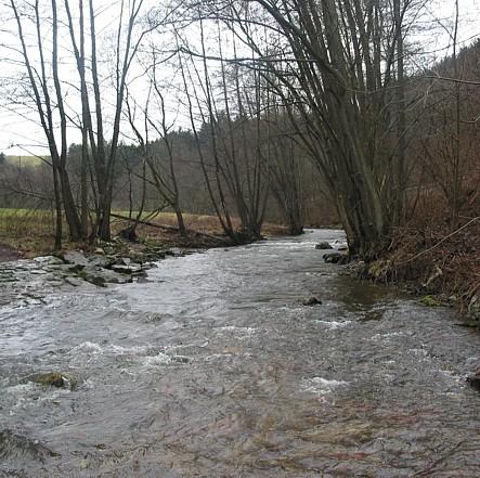 Pluwig. Die Ruwer bei Geizenburg unterhalb der Krebsensbrücke (Blick gegen die Fließrichtung)