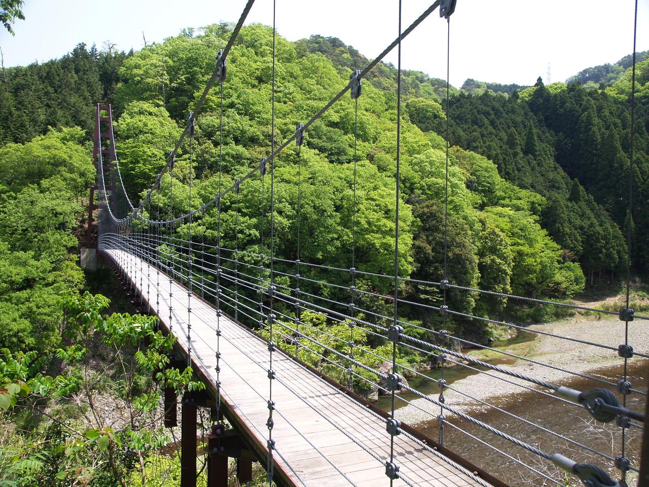 西南濃の四季~春~多良峡森林公園