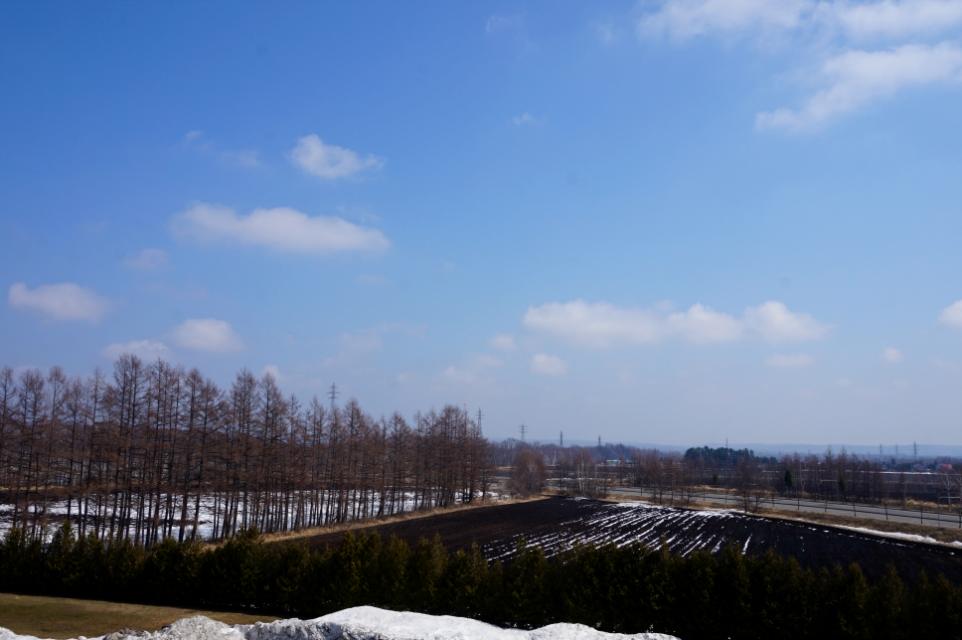 雪解けの黒い畑