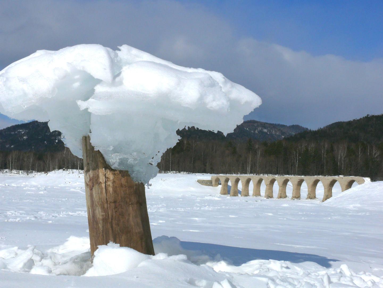 きのこ氷とタウシュベツ川橋梁